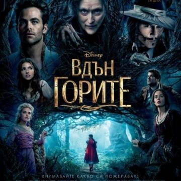 Вдън горите / Into The Woods (2015)