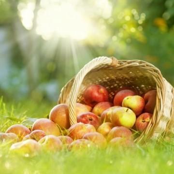 Ябълки с мента