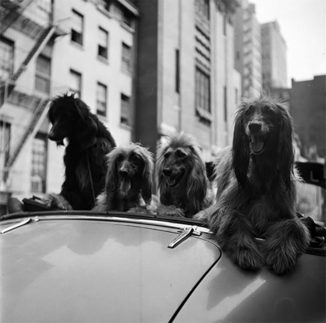 Ню Йорк от 40-те в 20 снимки на гениалния Стенли Кубрик