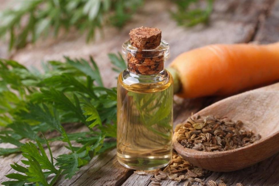Как морковеното масло помага на кожата и косата ни?