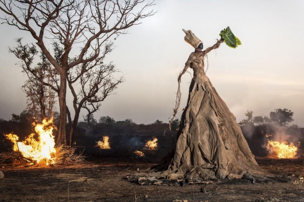 Уникална фотосесия показва какво причиняваме на природата