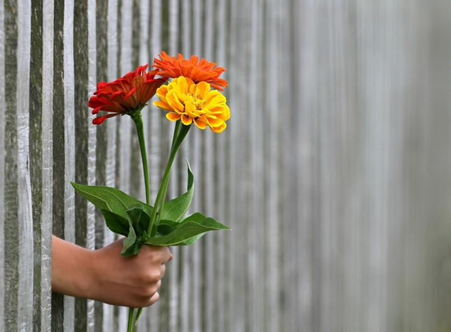 Щастието е в малките неща! Клишето е вярно