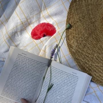 На пикник с книга