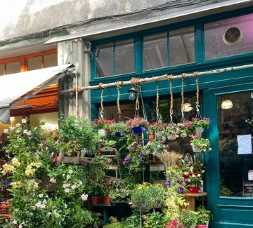 7 магазина за цветя с най-красивите витрини в София