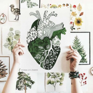 Ботаническите акварели на едно сибирско момиче