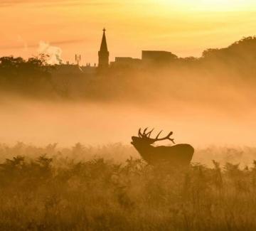 15-те най-добри пейзажни фотографии на Великобритания