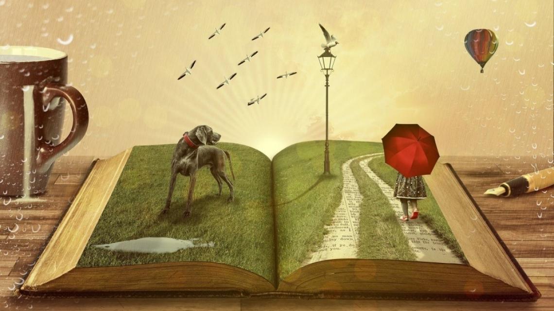 5 вълнуващи книги за… книги