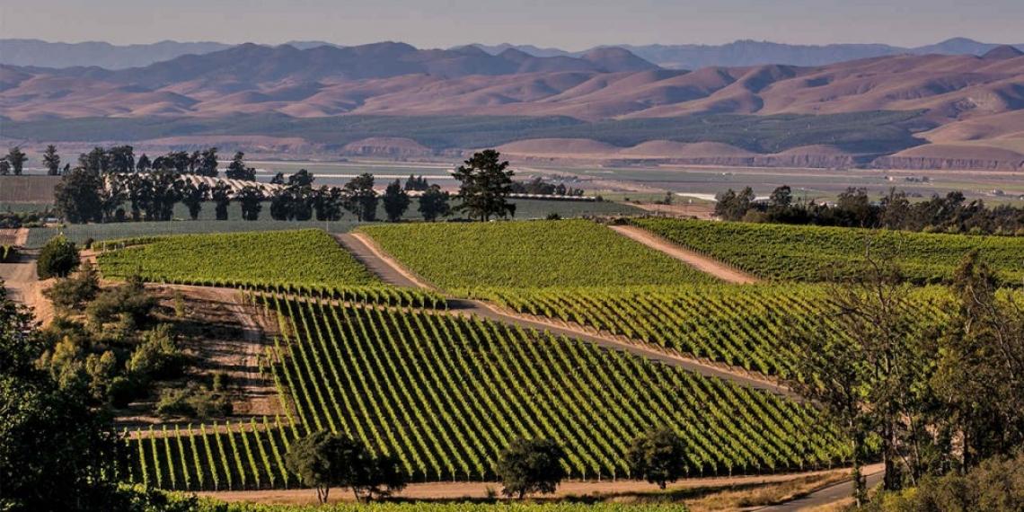 Град в Калифорния плаща по 100 долара на туристите