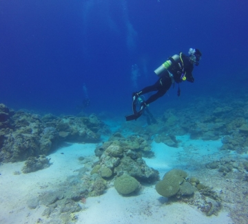 Първият подводен музей в Гърция вече приема посетители