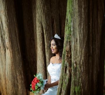 """Над 70 жени се """"омъжиха"""" за дървета, за да ги спасят"""