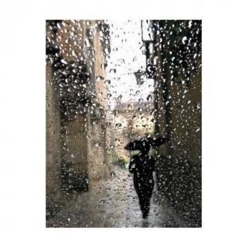 Любимо дъждовно време