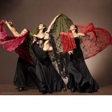 Очакваме представлението на Националния балет на Испания