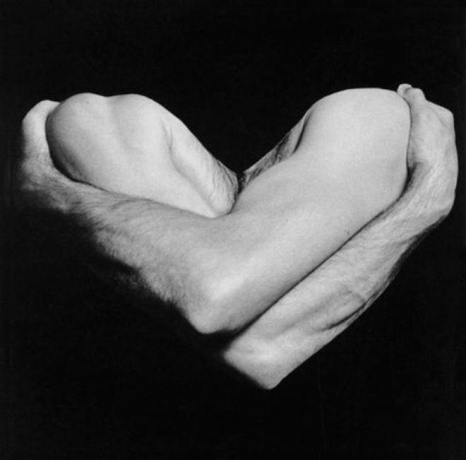 Тялото, погледнато от две страни - Огюст Роден и Робърт Мапълтроп