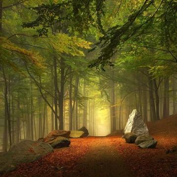 Магически пътеки за извървяване