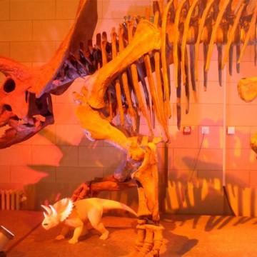 Истории с динозаври от столицата на Европа