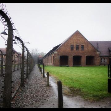 Discovery Channel пуска филм за 70-годишнината от освобождението на Аушвиц