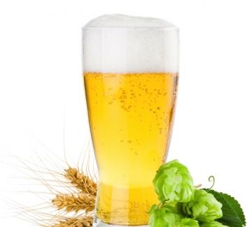 Какво не знаем за полезното действие на бирата?