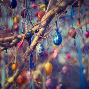 Как да си направим великденско дръвче у дома?