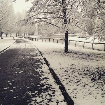 """""""Така веднъж във снежната алея…"""", Валери Петров"""