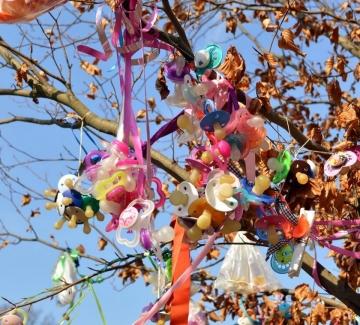 Дървото на порасналите и в София