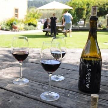 На чаша вино в долината на Сонома, Калифорния