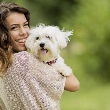 Иновативна застраховка за домашни любимци спестява 70% от разходите ви за ветеринар