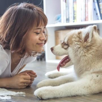Какво ще ни донесе годината на Кучето?