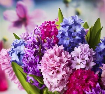 Цветята говорят