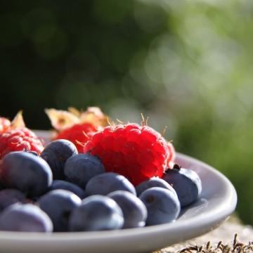 Силата на любимите ми бери плодове