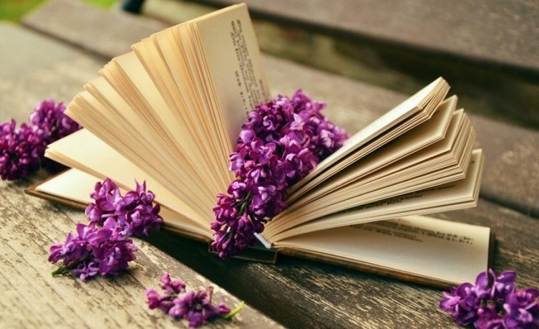 Топ 7 на любимите ни съвременни писателки