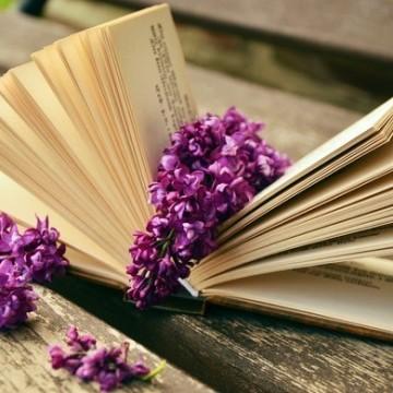 7 любими съвременни писателки, които не спираме да препрочитаме
