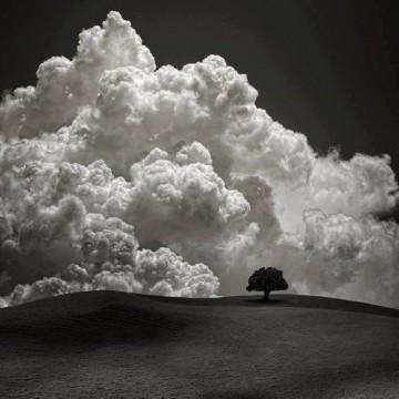 Омайващата красота на черно-бялата снимка