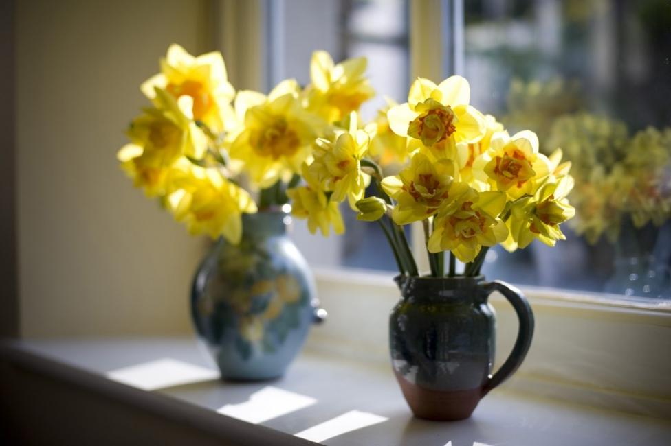 17 идеи как да пуснем разцъфващата пролет у дома