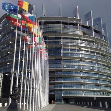 """""""Това е съкрушително!"""" или какво казаха европейските парламентаристи на България"""