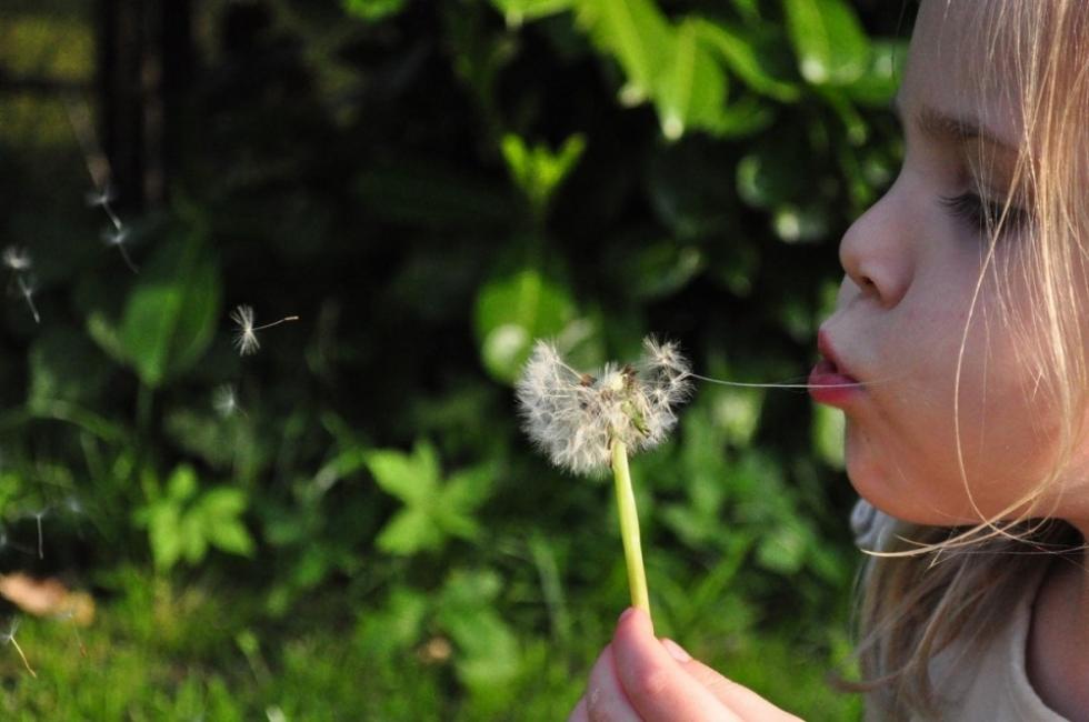 10 съвета към родителите от Януш Корчак