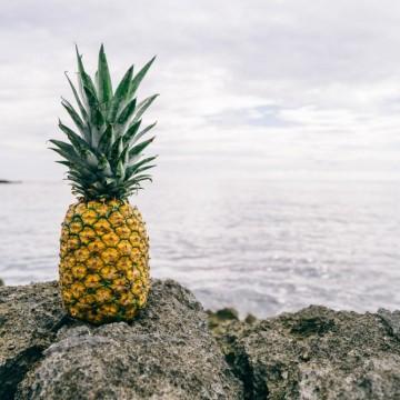 10 любими бг песни, които ни пренасят близо до морския бряг
