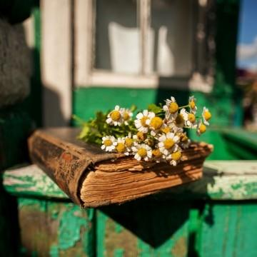 Любимите цветя на българската литература