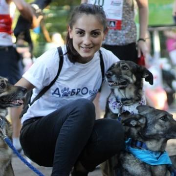 4 момичета, които са приели съдбата на изоставените кучета като лична кауза