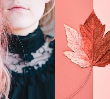 Цветът на 2019 година - всичко, което трябва да знаете