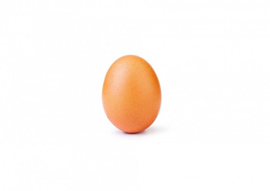 Яйцето е първо - вижте в Инстаграм