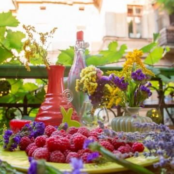 Балконски цветя от семена– бързо, лесно и адски красиво!