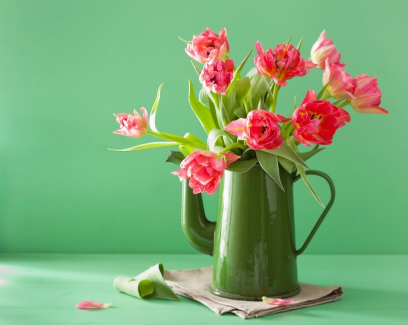 Какво да направим с прецъфтелите луковични цветя?