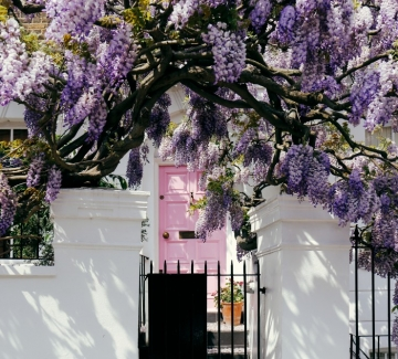 Тайната градина: Пролетна приказка в 5 лесни стъпки!