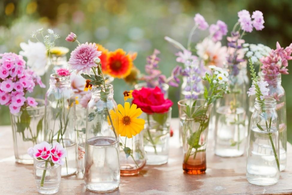 5 известни пролетни цветя и техните значения