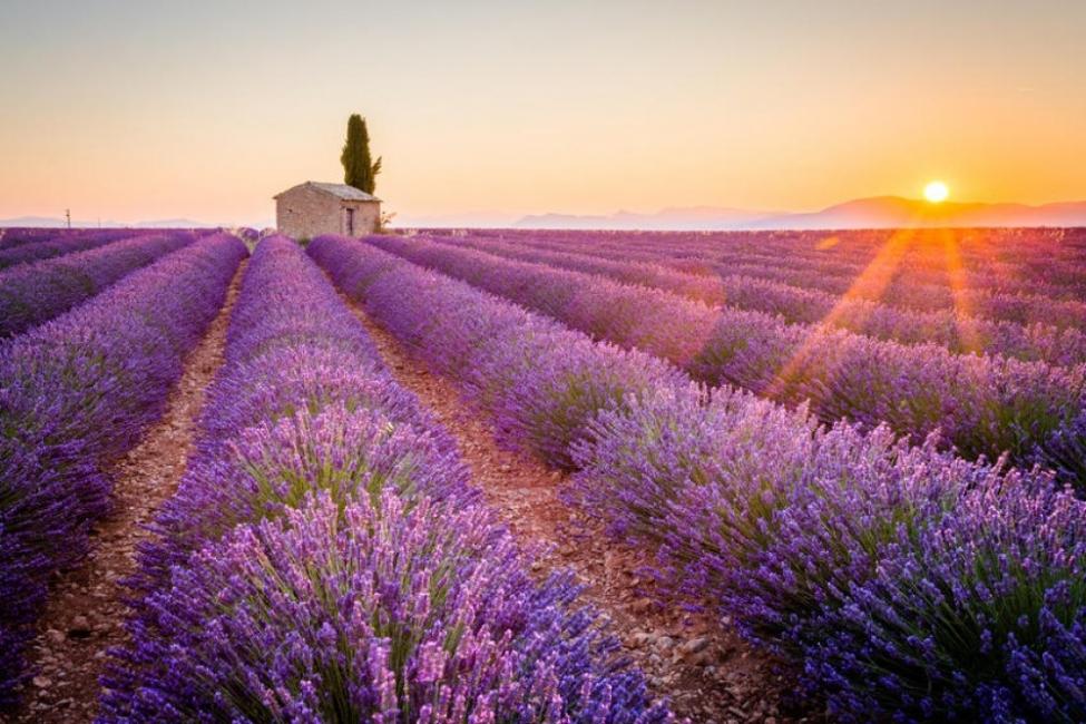 C'est la vie: 5 специални места на Френската Ривиера