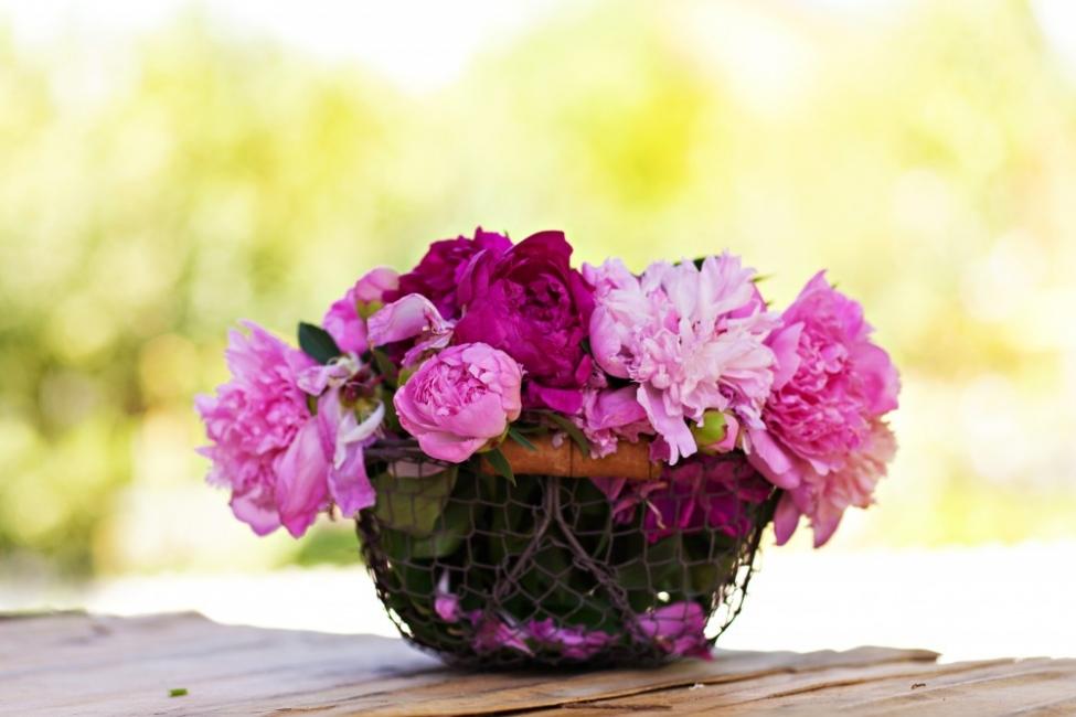 8 съвета за осем пъти по-трайни летни букети