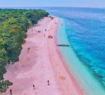 6 спиращи дъха розови плажа
