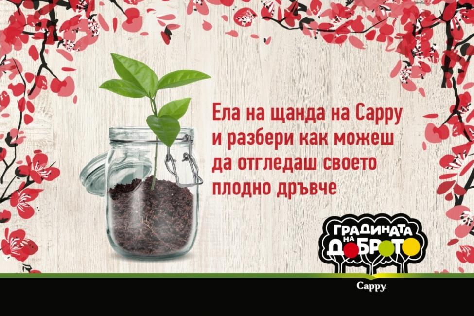 Стани част от инициативата на Сарру и отгледай свое плодно дърво