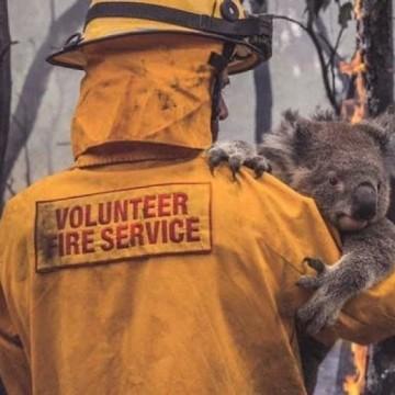 Огненият ад в Австралия в 21 кадъра