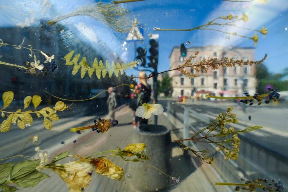 За спирките и хората: кои са малките неща, които правят големия град уютен?